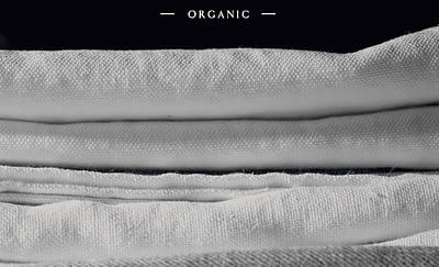RaumAusbeute_Organic